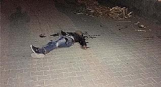 Kayyum atanan kaymakama suikast haz�rl���ndaki PKK'l� �ld�r�ld�