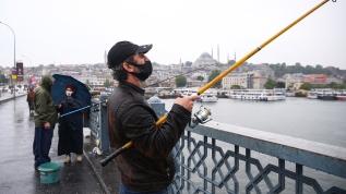 Özlem bitti... Balıkçılar oltalarını alıp İstanbul Boğazı'na koştu