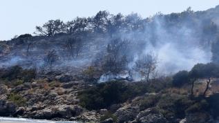 Muğla'da 2 hektarlık alan yangında zarar gördü