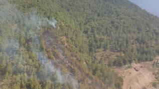 Hatay'da korkutan yangın kontrol altına alındı