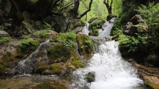 Türkiye'de saklı bir cennet! Ziyaretçilerini büyülüyor
