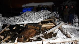 Yoğun kar yağışı nedeniyle ağıllar çöktü, hayvanlar telef oldu