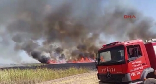 Mogan Gölü kenarındaki sazlık alanda yangın çıktı