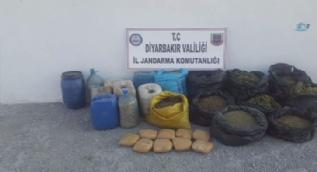Diyarbakır'da terör örgütü PKK'ya darbe