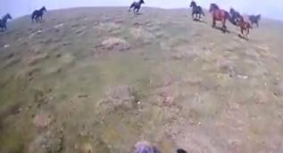 Dağda karşılarına çıkan yılkı atlarıyla yarıştı