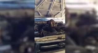 Araba tamiri yapan maymun hayrete düşürdü